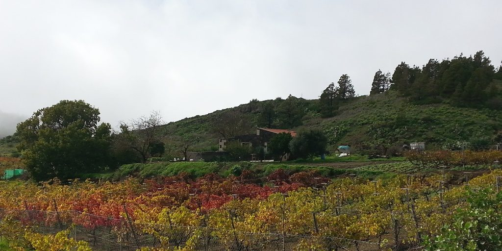 viti-el-hierro